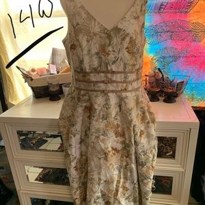 Dresses & Skirts - Cute size 14 W dress